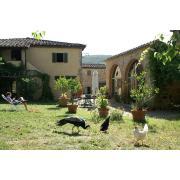 06_poderecampalfi_tuscany.jpg