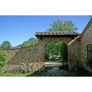 13_poderecampalfi_tuscany.jpg