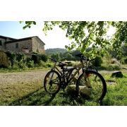 22_poderecampalfi_tuscany.jpg